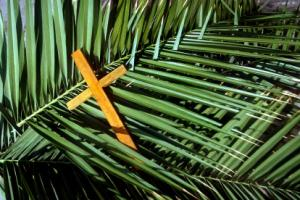 palm-sunday-usa