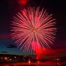 Firework-Chrysanthemum