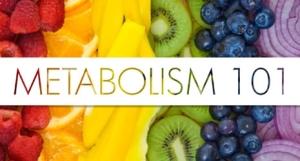 Metabolism_1011