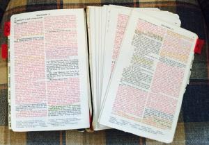 My Bible3