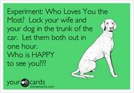 XXXtrunks, dog or wife