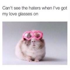 Can't see the haters