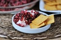 cranberry-salsa-dip