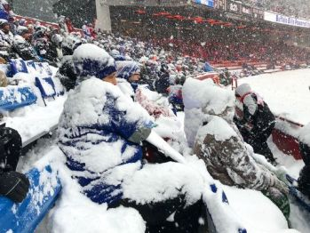 Bills fans1