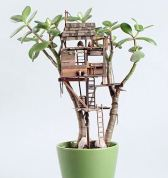 House in plant2